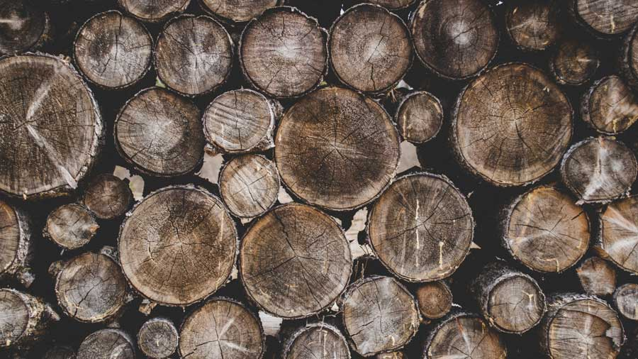 Vietnam Wood Products Exports To Reach Record High In 2018